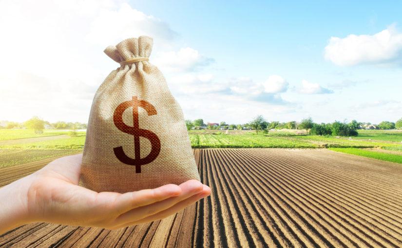 Saiba como conseguir o seu crédito rural da melhor maneira