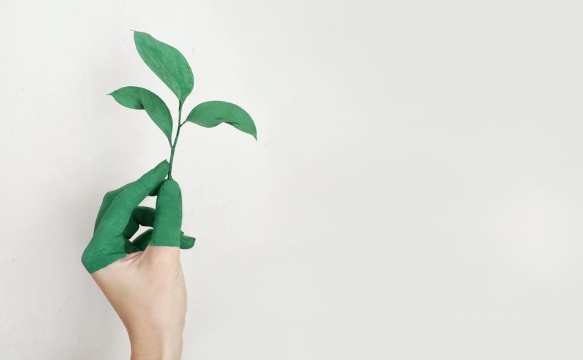 Como a sustentabilidade pode melhorar a imagem da sua empresa no mercado