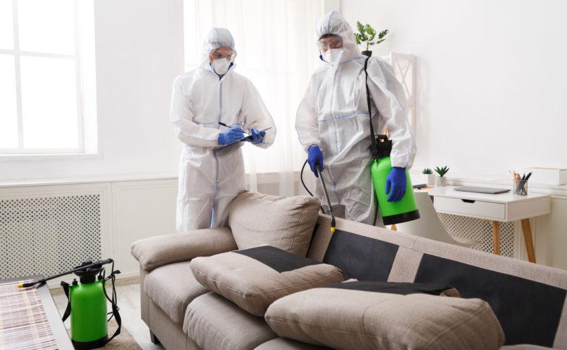 Aprenda como a dedetização domiciliar pode te ajudar